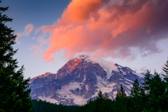 Mount Rainier Sunset from Longmire