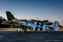 P-51 Mustang Impatient Virgin