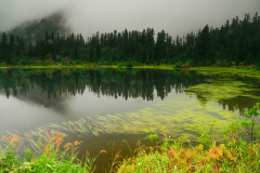Foggy Picture Lake
