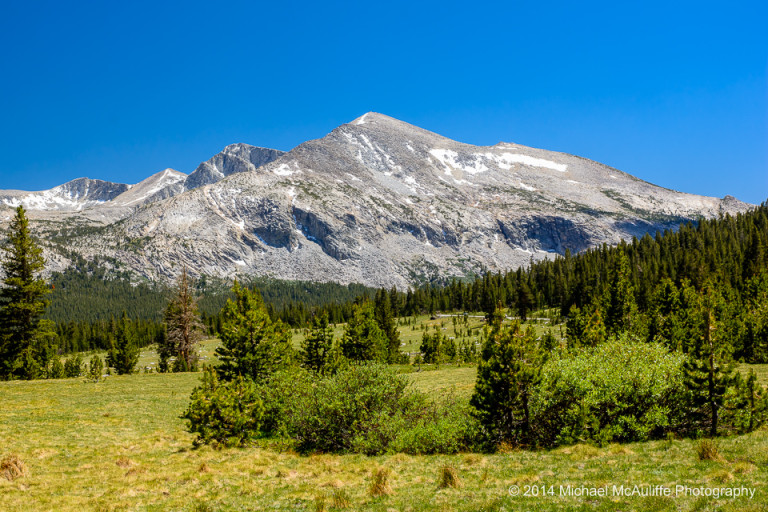 View From Tioga Pass