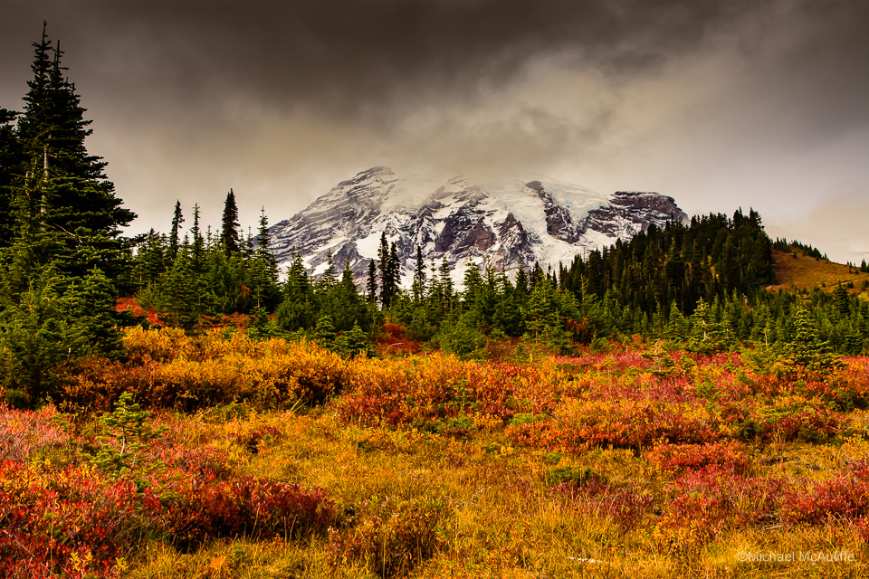 Fall colors and Mount Rainier From the Paradise Visitor Center