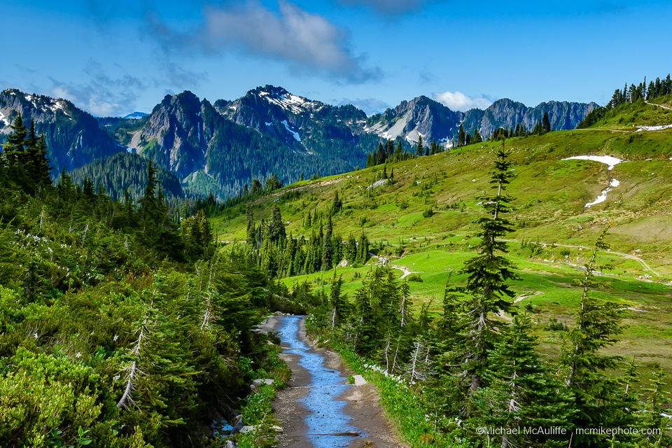 A view of the Tatoosh Range from a trail at Paradise on Mount Rainier.